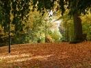 Herbststimmung im Stadtpark